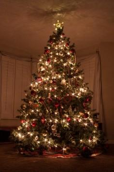 geschmückter Weihnachtsbaum in der Wohnstube