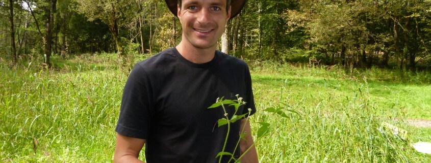 Galinsoga ciliata, Bewimpertes Franzosenkraut