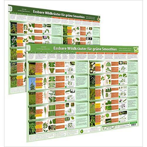 2er-Set-Essbare-Wildkraeuter-fuer-Gruene-Smoothies-Poster-DINA2-Teil-1-2