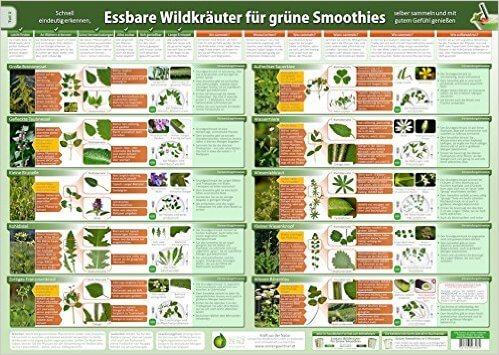 Essbare Wildkraeuter für Gruene Smoothies Teil 2 - Wandposter DINA2