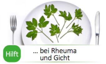 Heilpflanze Giersch bei Rheuma und Gicht
